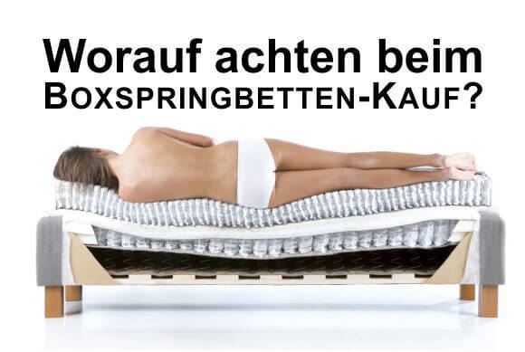 boxspringbetten k ln revor bei moonlight. Black Bedroom Furniture Sets. Home Design Ideas
